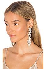 Elizabeth Cole Phee Earrings in Nude