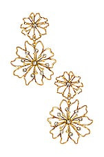 Elizabeth Cole Annabelle Earrings in Gold