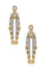 Elizabeth Cole Ellen Earrings in Gold