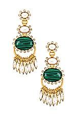 Elizabeth Cole Bonnie Earrings in Gold