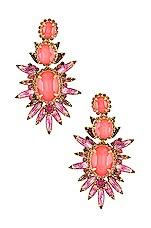 Elizabeth Cole Carmella Earrings in Pink