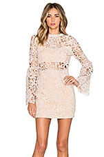 Endless Rose Willamette Lace Dress in Nude Pink