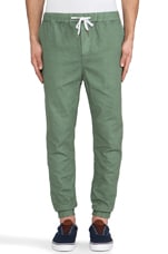 Def Tone Pant in Sage Green