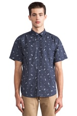 Franco Button Down in Navy