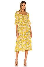 FAITHFULL THE BRAND Nora Midi Dress in Jolene Floral