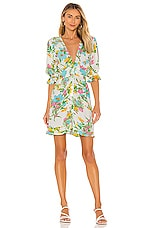 FAITHFULL THE BRAND Caliente Mini Dress in Ilona Floral