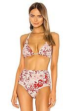 FLAGPOLE Brooklyn Bikini Top in Paradise