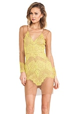 For Love & Lemons Antigua Mini Dress in Chartreuse/Nude