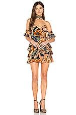 For Love & Lemons Flamenco Strapless Dress in Tan Flamenco