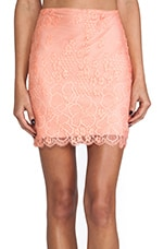 Flower Bomb Slip Skirt in Sorbet & Nude