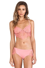 X REVOLVE Bat Your Lashes Bra in Pink Spiderweb