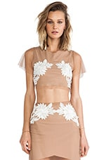 Balmly Nights Crop Top in Nude