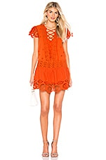 Free People Esperanza Eyelet Mini Dress in Orange
