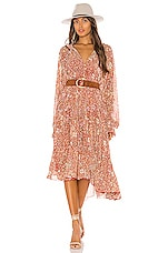 Free People Feeling Groovy Maxi Dress in Red