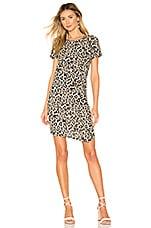 Generation Love Holly T Shirt Dress in Leopard