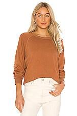 The Great The College Sweatshirt in Sweet Tea