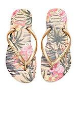 Havaianas Slim Tropical Sandal in Ivory