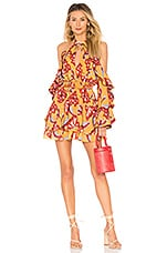 House of Harlow 1960 x REVOLVE Harmony Dress in Reims Floral