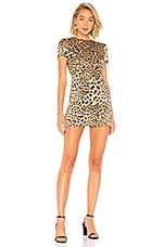 House of Harlow 1960 x REVOLVE Delphine Dress in Leopard