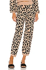 House of Harlow 1960 x REVOLVE Devin Pants in Leopard