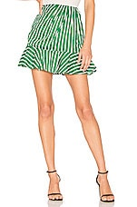 House of Harlow 1960 x REVOLVE Drika Skirt in Kelly Green Stripe