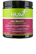 HUM Nutrition Tahitian Vanilla & Berry Skin & Energy Superfood Powder
