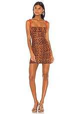 h:ours Taya Mini Dress in Leopard