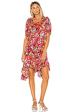 ICONS Objects of Devotion Babydoll Dress in Red Floral