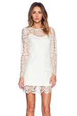 Dove Dress in White Lace