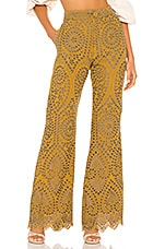Jen's Pirate Booty Picasso Pants in Citrine Mariachi Eyelet
