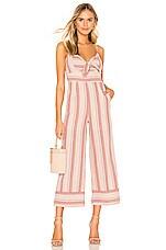 J.O.A. Striped Linen Tie Front Jumpsuit in Pink Stripe