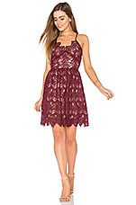 J.O.A. Fit And Flare Lace Dress in Burgundy