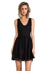 Phelia Lace Dress in Caviar
