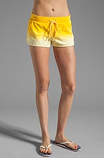 Ombre Velour Dolphin Short in Pineapple
