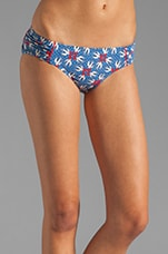 Love Birds Classic Bottom in Sailor Blue Multi