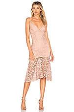 Karina Grimaldi Diana Lace Dress in Rose Water