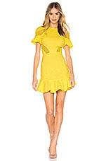 Karina Grimaldi Lila Eyelet Mini Dress in Sun Eyelet