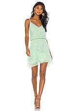 Karina Grimaldi Love Print Dress in Ivy Pistachio
