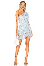 Karina Grimaldi Tana Print Mini Dress in Periwinkle Animal