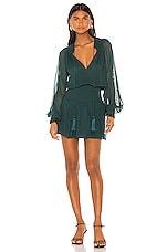 Karina Grimaldi Vintage Mini Dress in Green