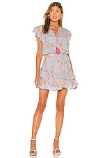 Karina Grimaldi Rafa Print Mini Dress in Light Water Floral
