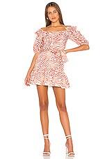 Karina Grimaldi Martha Linen Print Mini Dress in Sand Stone Zebra