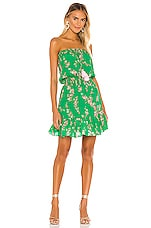 Karina Grimaldi Olie Print Mini Dress in Verde Water Floral