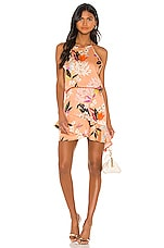 krisa High Low Halter Mini Dress in Camellia