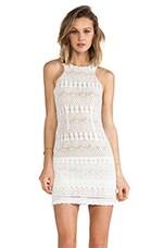 Havisham Lace Dress in White