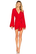 L'Academie The Janeiro Mini Dress in Red