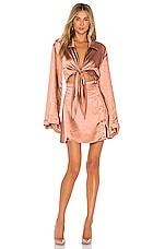 L'Academie The Phillipa Mini Dress in Copper