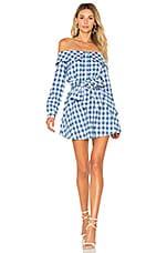 L'Academie Jann Button Up Dress in Light Blue Gingham