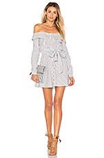 L'Academie Jann Button Up Dress in Blue & White Stripe