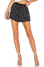 L'Academie Sightseer Shorts in Black Stripe